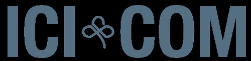Webdesign icicom
